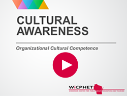 Play Organizational Cultural Competence Module